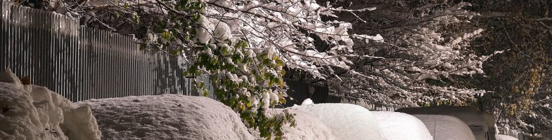 5 Considerations For Choosing A New Snow Blower